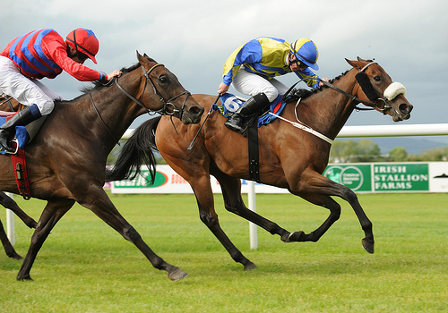 Horse racing action Tipperary races