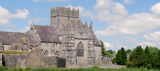 http://Holycross%20Abbey%20Tour%20Guides