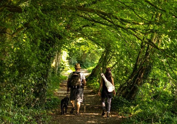 Walking in woods – Lough Derg Blueway