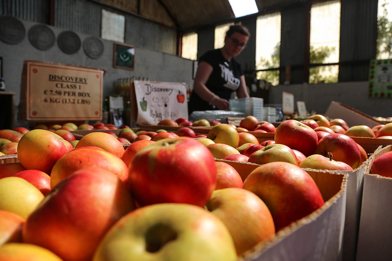 The Apple Farm