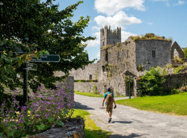 3 days in and around Fethard